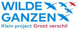 Wilde Ganzen (Wild Geese)